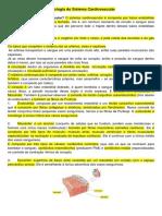 Resumo Histologia P2