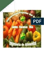 PROGRAMA ING ALIMENTOS LISTO 2014-2 (1).pdf