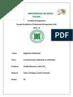 Contaminación ambiental en Chimbote.docx