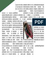 articulo diario la hora carrera electronica.docx