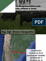 1- Bruno V. Salto Uru.pdf