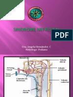4.1 Sindrome Nefritico Angela (1)