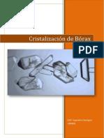 Informe Borax
