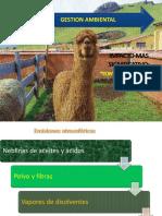 gestión ambiental .pptx