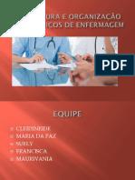 Estrutura e Organização Do Serviços de Enfermagem