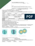 Evaluacion Reproduccion Celular (Autoguardado)