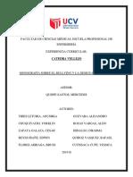 monografia catedra.docx