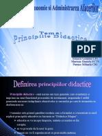 PROIECT PEDAGOGIE