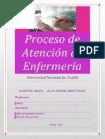 263694984-PAE-DE-GINECOLOGIA.docx