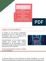 Mecanismo de accion de insulina con las tres vias mas estudiadas