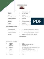 CV liz inei.docx