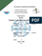 Ensayo-Anemia y Desarrollo Cognitivo