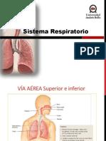 Clase 8 Sistema Respirat.