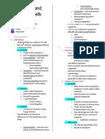 Prokaryotic and Eukaryotic Cells Reviewer