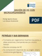 BIOREMEDIACIÓN SÓLIDOS IMPREGNADOS CON HIDROCARBURO