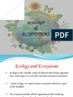 Ecology and Ecosystem 03