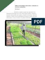 Producción de hortalizas con tecnología e innovación