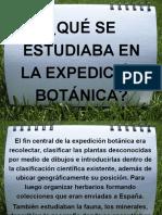 ¿Qué Se Estudiaba en La Expedición Botánica?