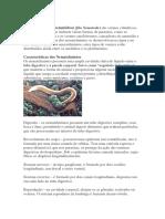 Trabalho de Microbioligia