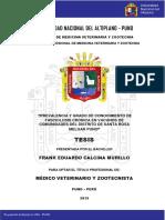 Calcina_Murillo_Frank_Eduardo.pdf