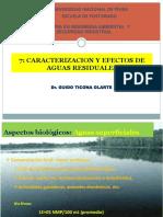 7 Caracterizacion y Efectos de Las Aarr