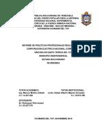 Informe Final de Practicas Profesionales Ismael Rodriguez