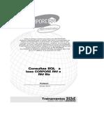 Consulltas SQL Base RM Sistemas