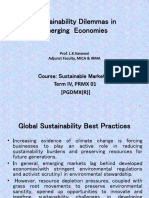 S-2b.sustainability Dilemmas in Emerging Economies