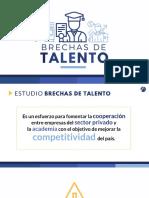 Estudio Fundesa 11. EBT 2017 TICs Software y Contact Centers