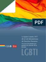 CEJIL Informe_lgbti_vc_online_nov.pdf