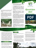 Plegable Gestion Del Riesgo