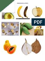Oxidacion de La Fruta