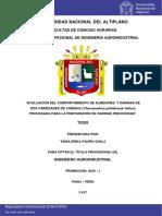 Almidon y Harina de Quinua y Cañihua Tesis Una