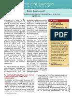 116323773-88945242-Boletin-Constitucional.pdf