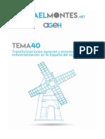 Tema 40. Transformaciones agrarias y proceso de industrialización en la España del siglo XIX