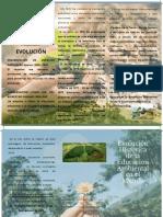 Folleto educacion ambienta