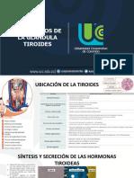 Trastornos de la glándula tiroides (1)