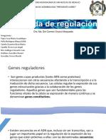 Cascada de Regulación