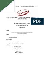 Informe Final Modelo Terminado Experimental
