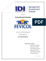BrandManagemnt SectionAGroup3 Fevicol