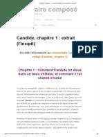 Candide, Chapitre 1 _ Extrait (l'Incipit) _ Commentaire Composé