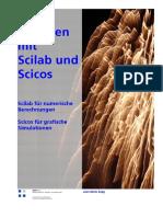 Arbeiten mit Scilab und Scicos_v1.pdf