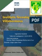 Árbol de Problema Muñoz Dela Cruz