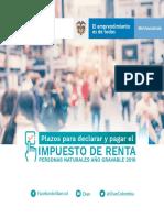 Plazos_RentaNaturales_2019.pdf