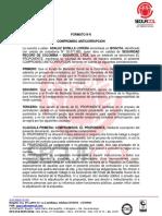 ANEXO N°6 FONDO.docx