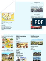 35896628 Triptico Flora Fauna de Tacna