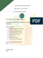 ecologia proyecto.docx