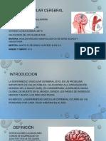 Evento Vascular Cerebral-5D (1)