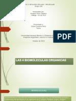 Presentacion Diapositiva 4 Biomoleculas Organicas.