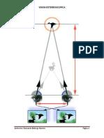 Guia Fotogrametria-3 (Vision Estereoscopica)